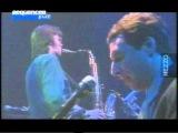 Ben Sidran - Language of the Blues