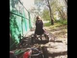 ne_kotyara video