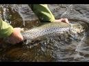 Pesca en Rusia Río Varzina Península de Kola