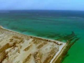 Дикая Австралазия. Часть 3. Южные моря