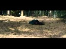 Охотники на ведьм 3D. Hansel and Gretel Witch Hunters. ТВ-ролик №2