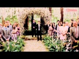 ♣ Edward's and Bella's wedding - Rolling in the Deep