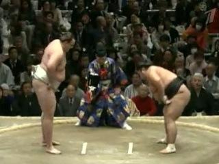 Курьезный случай произошел на традиционном турнире по сумо в столице Японии - Первый канал