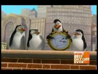 Pingwiny z Madagaskaru - Stop czas
