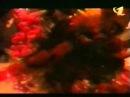 Виктор ЦОЙ и группа КИНО Концерт в С К Олимпийский г Москва 5 мая 1990 года