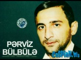 Perviz Bulbule - Can cana