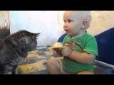 Делим булку на двоих!=)))) Приколы с детьми и котами))))