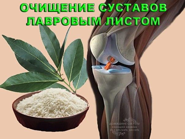 рецепт из желатина для лечения суставов