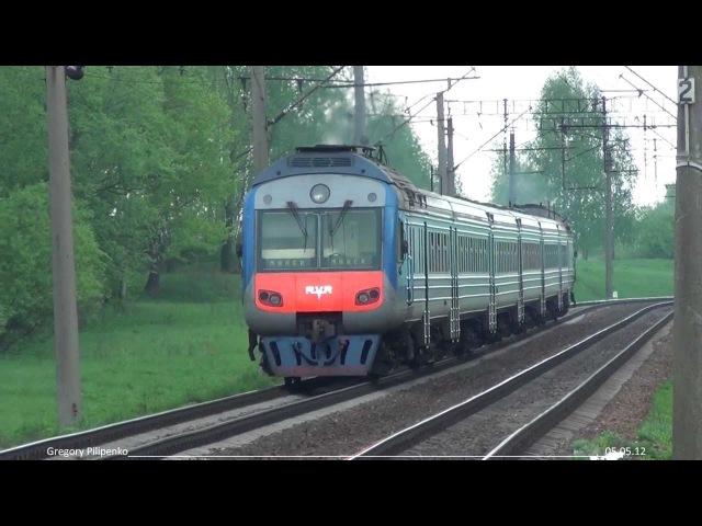 Дизель-поезд ДР1Б-501 на перегоне Пуховичи - Техникум