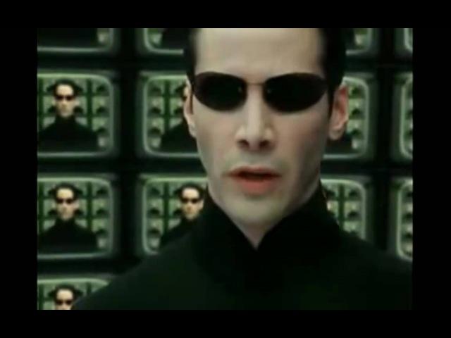 Helge Schneider beim Arbeitsamt in der Matrix