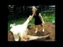 Nicole Aniston Eva Angelina Jessie Rogers Lexi Belle Jayden Jaymes русское актрисы Moms Bang Teens oil massage анал жесткий порн