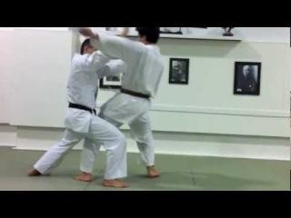 Bunkai Kumite (Heian Yondan)