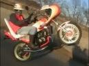 Yamaha RZ250 Wheelie [Japanese motorcycle gang style ] 2