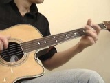 'Low Bee' (Fretless Acoustic)