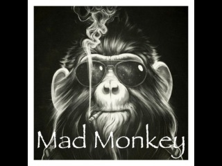 MadMoombox - Mad Monkey (Aggressive Sound Moombahcore in the Mix)