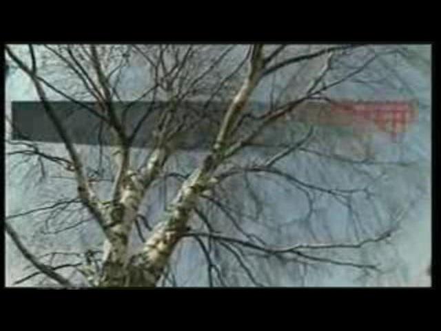 Запрещенное документальное кино про Путина (2 часть) — смотреть онлайн видео, бесплатно!