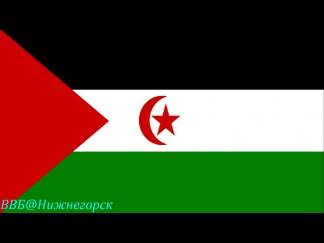 Эль Аюн Бир Лелу Сахарская Арабская Демократическая Республика