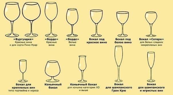 Названия бокалов для вина и их назначение.