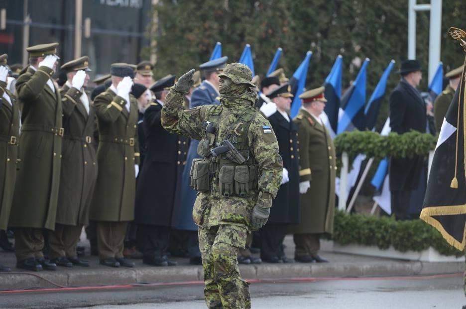 Armée Estonienne/Estonian Army - Page 2 UN7bOYvyc50