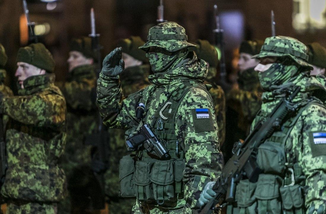 Armée Estonienne/Estonian Army - Page 2 CEB1TmN4FGQ