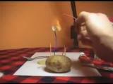 Как сделать зажигалку из зубной пасты, картошки и соли