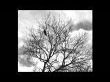 Jay Dee - The Wind (Rare J Dilla)