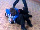 Учитесь как правильно нужно драться!!:D