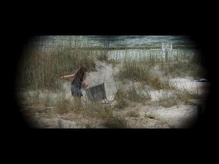 Последняя песня / The Last Song (2010)
