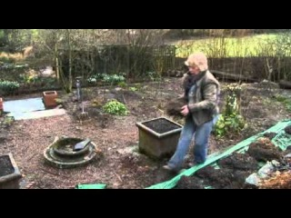Life in a Cottage Garden with Carol Klein - 4 of 6