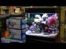 Aquariums West Red Sea Max 130D