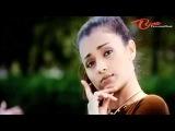 Allari Bullodu - Andamante Evaridhi - Trisha - Nithin - Telugu Song