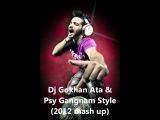 Dj Gokhan Ata & Psy - Gangnam Style (2012 mash up)
