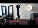 Dolphin Pose, Forearm Stand, and Scorpion Pose by Julie Wilcox