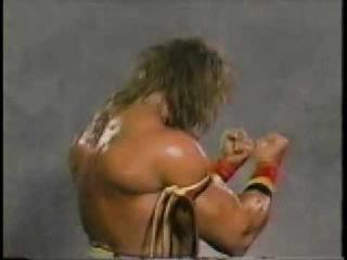 Hulk Hogan Vs, Ultimate Warrior (Insane warrior Promo)