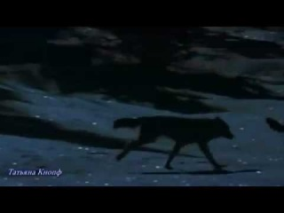 В сердце волчьем страха нет - Александр Малинин