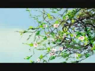 Отрывок из мультфильма «Князь Владимир» - песня «Может знает Лес»