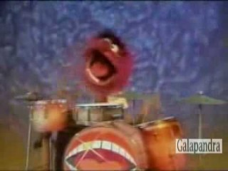 Animal Muppet - Plays Drums And Sings (Ultra Brutal Death Metal Grind).