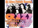 Lumidee Ft. Pitbull vs Nicola Fasano &amp Steve Forest - Crazy (DJ ALEX FRESH remix)