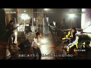 Aqua Timez × HARUNA ♪ALONES