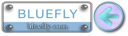 www.bluefly.com