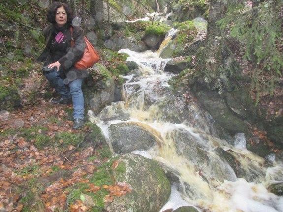 У водопада в национальном парке