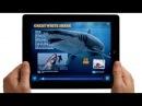Apple - iPad - TV Ad - Alive
