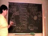 Школа Воинов Света Урок 2 Светлое будущее