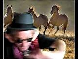 Keith Richards - Wild Horses (Dragged Him Away)