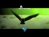 Aiera - Dunes (Ahmed Romel Remix) Abora Recordings Promo