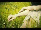 Sen Gelmez Oldun (Remix) / Alihan Samedov - Enstrumantal