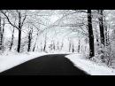 Donna $ummer Winter Melody