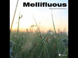 Wayward Brothers - Mellifluous (Original Mix)
