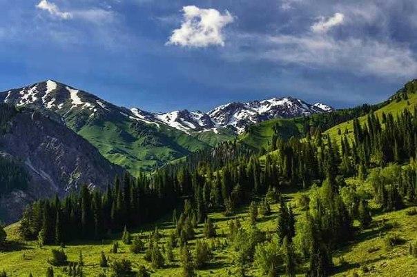 наши  горы)))