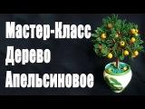 Апельсиновое дерево из бисера (видео мастер-класс) [zhezelru]